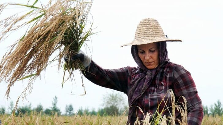 women-agriculture-1
